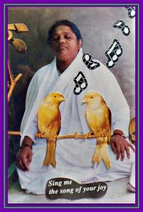 Nirmalamrita's meditation picture