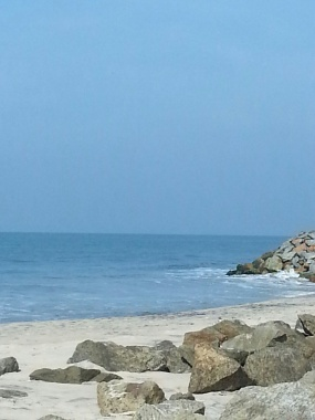 Arabian Sea