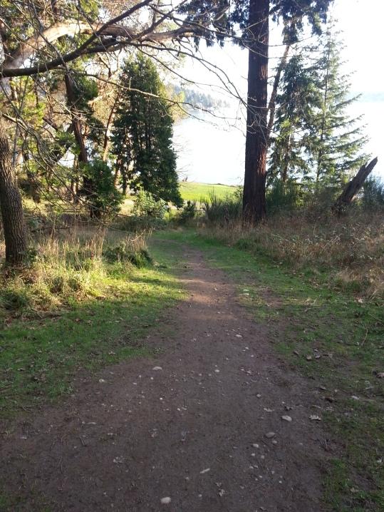 Seward Park trail