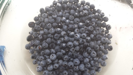 Blueberries from farmers' market