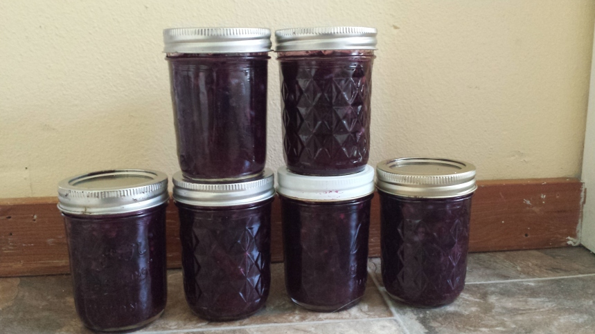 Put the jam in jars, refrigerate over night, and then place them in the freezer