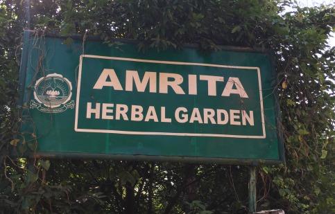 Amrita Herbal Garden