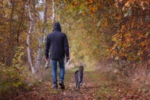 autumn-walk-1792812_1280
